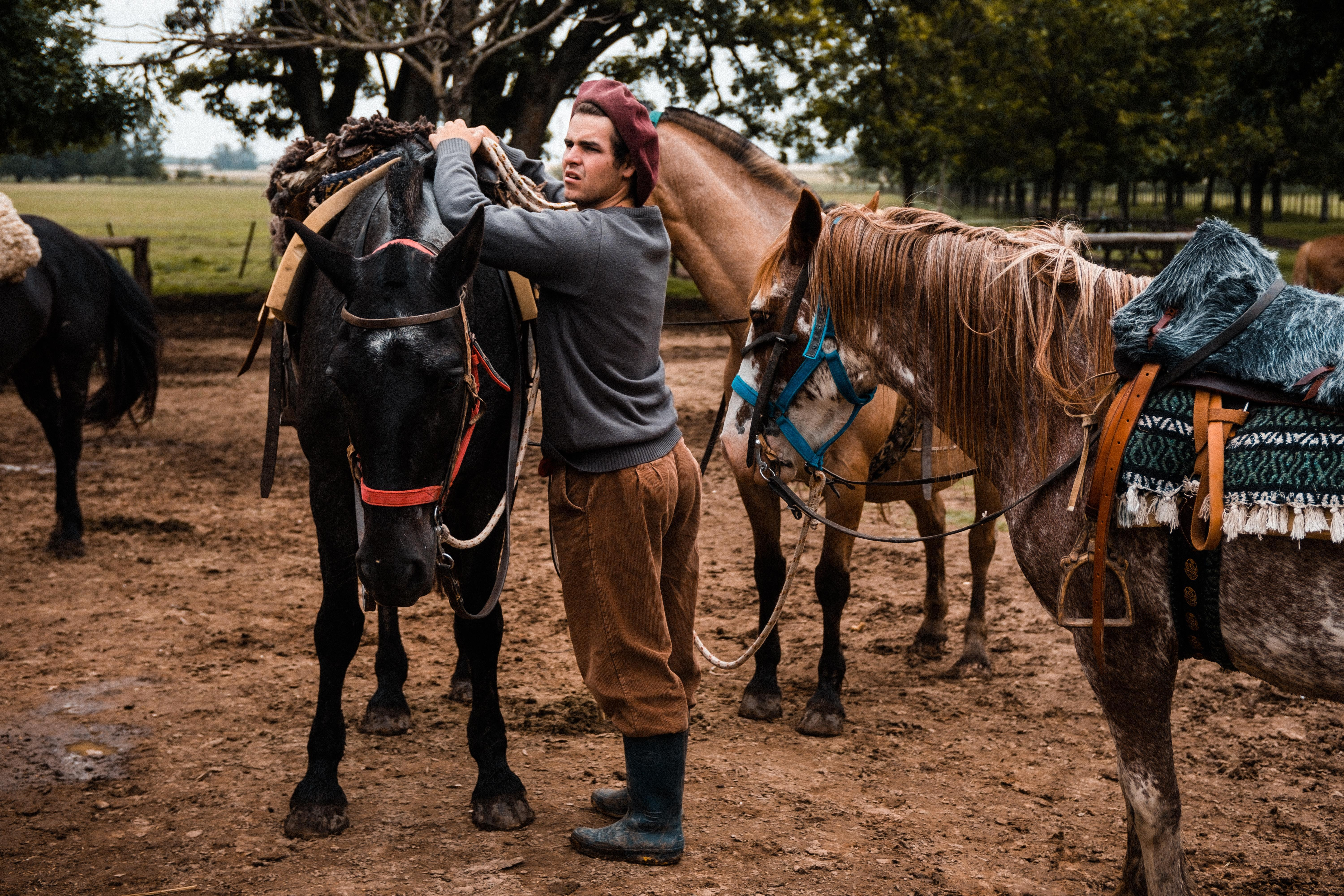 Estancia and Gaucho Experiences from Buenos Aires