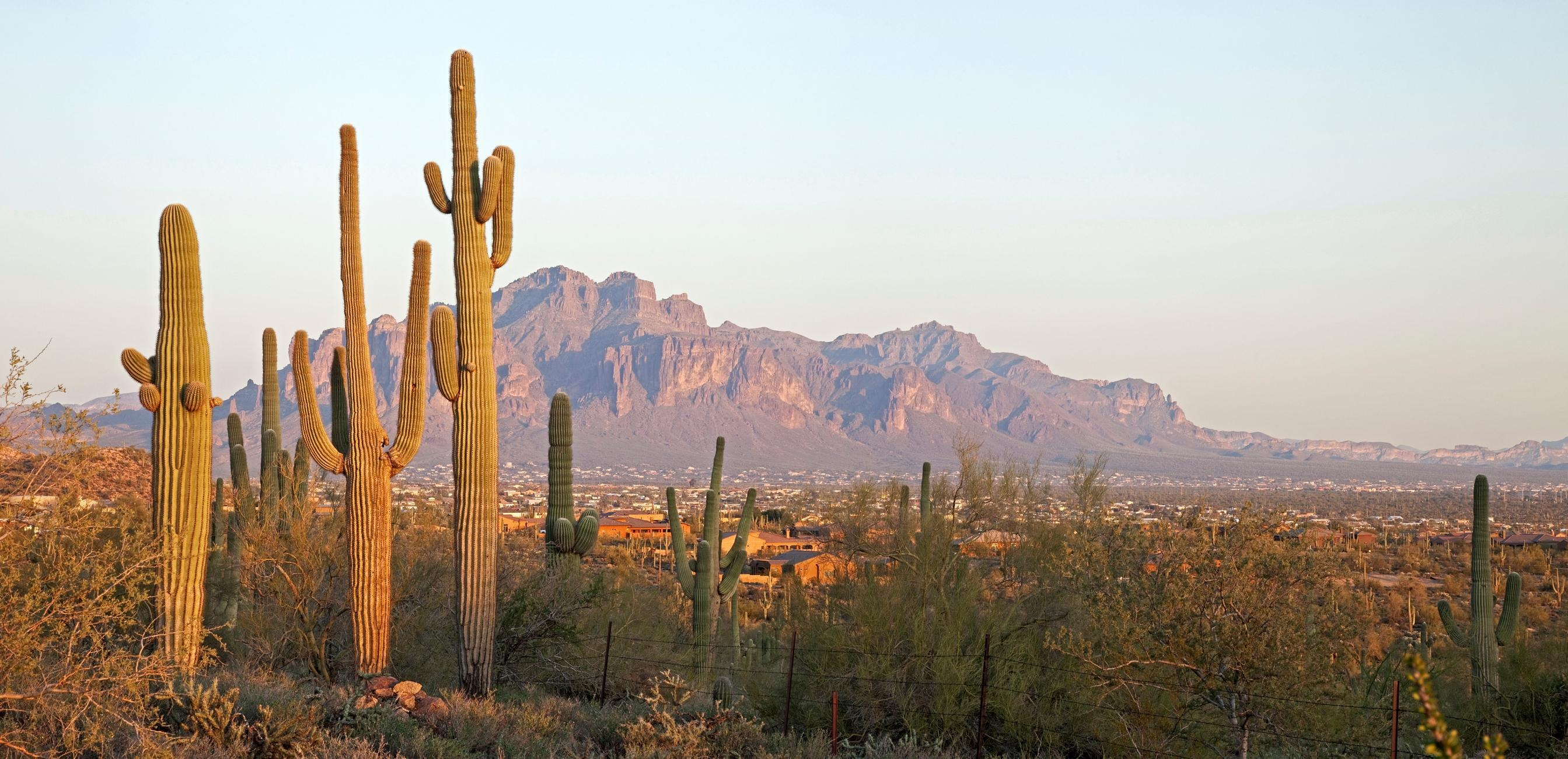 How to Spend 3 Days in Phoenix