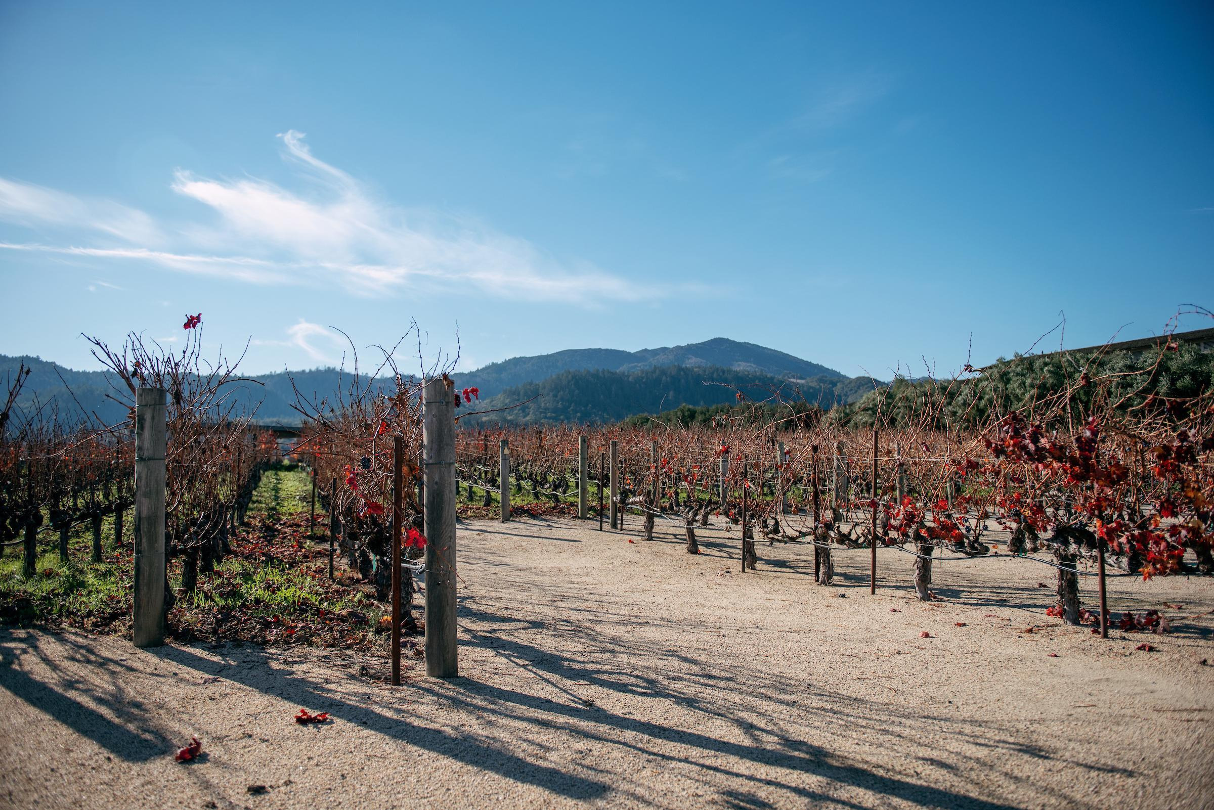 How to Spend 3 Days in Napa & Sonoma