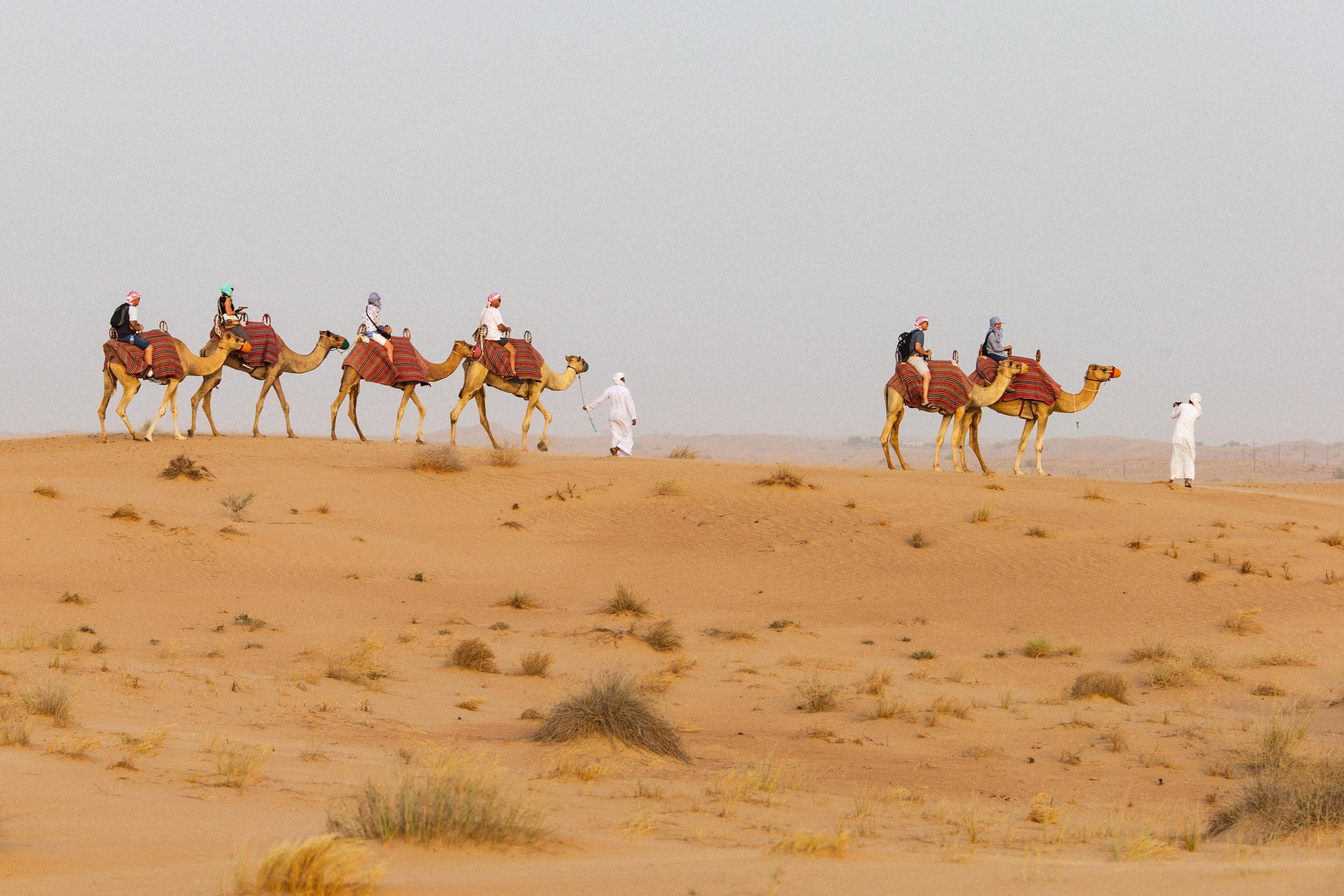Dubai Desert Safaris