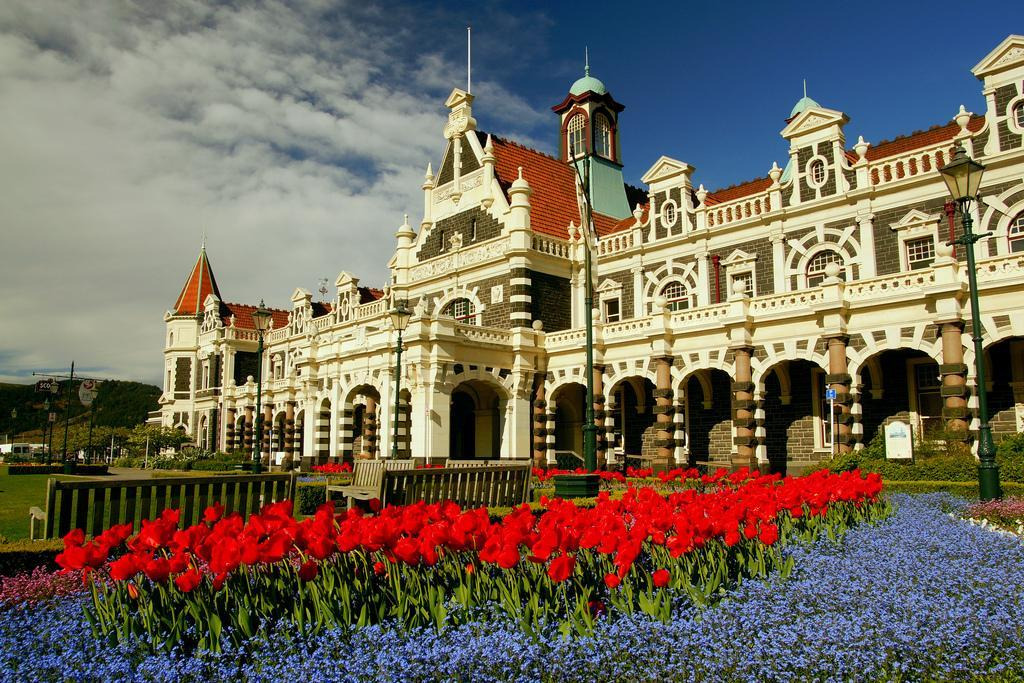 How to Spend 3 Days in Dunedin