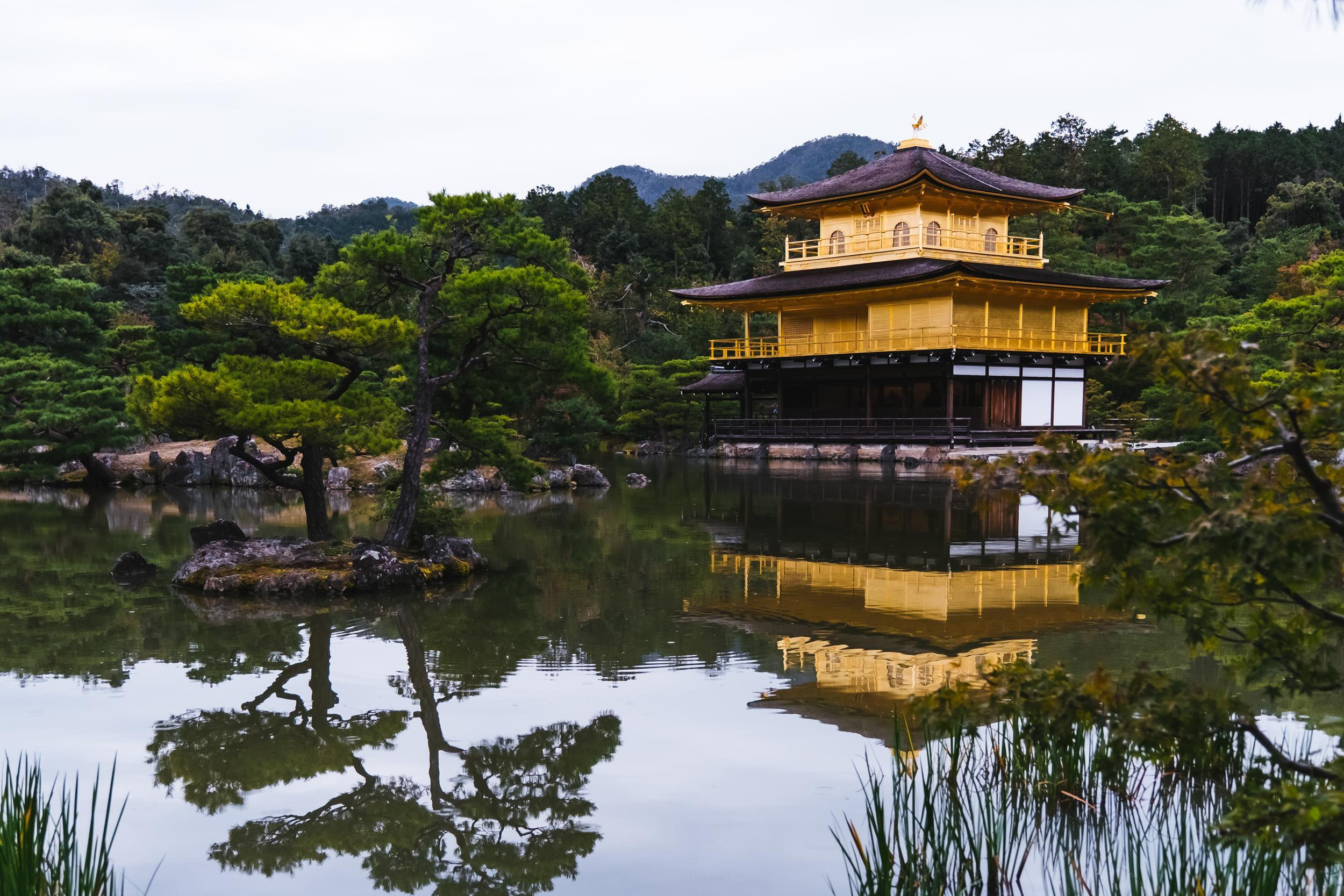 Kyoto Day Trips from Osaka