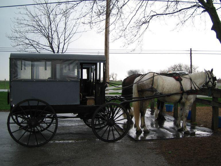 Amish Country Tours from New York City