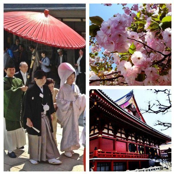 Las 10 mejores  cosas para hacer en Tokio