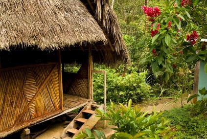 Overnight Amazon Jungle Lodge Stays from Puerto Maldonado