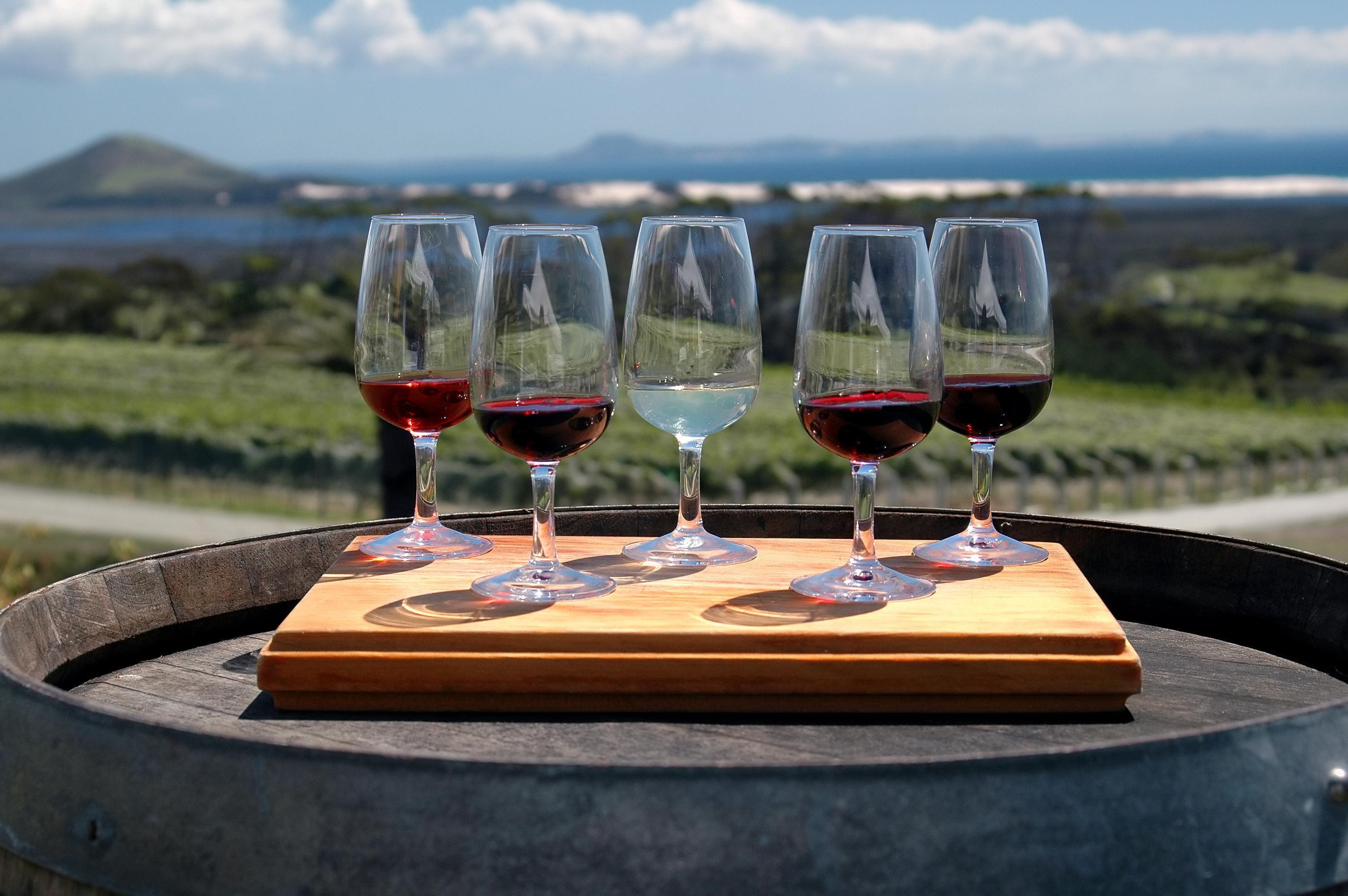 Wine Lover's Guide to Otago