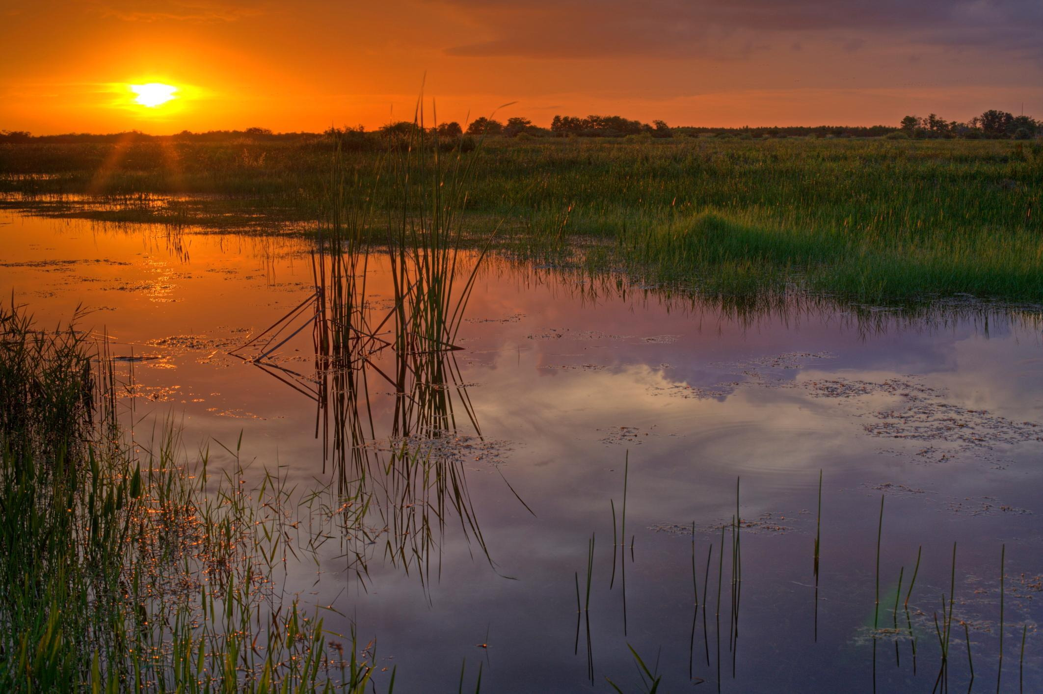 How to Spend 3 Days in Everglades National Park