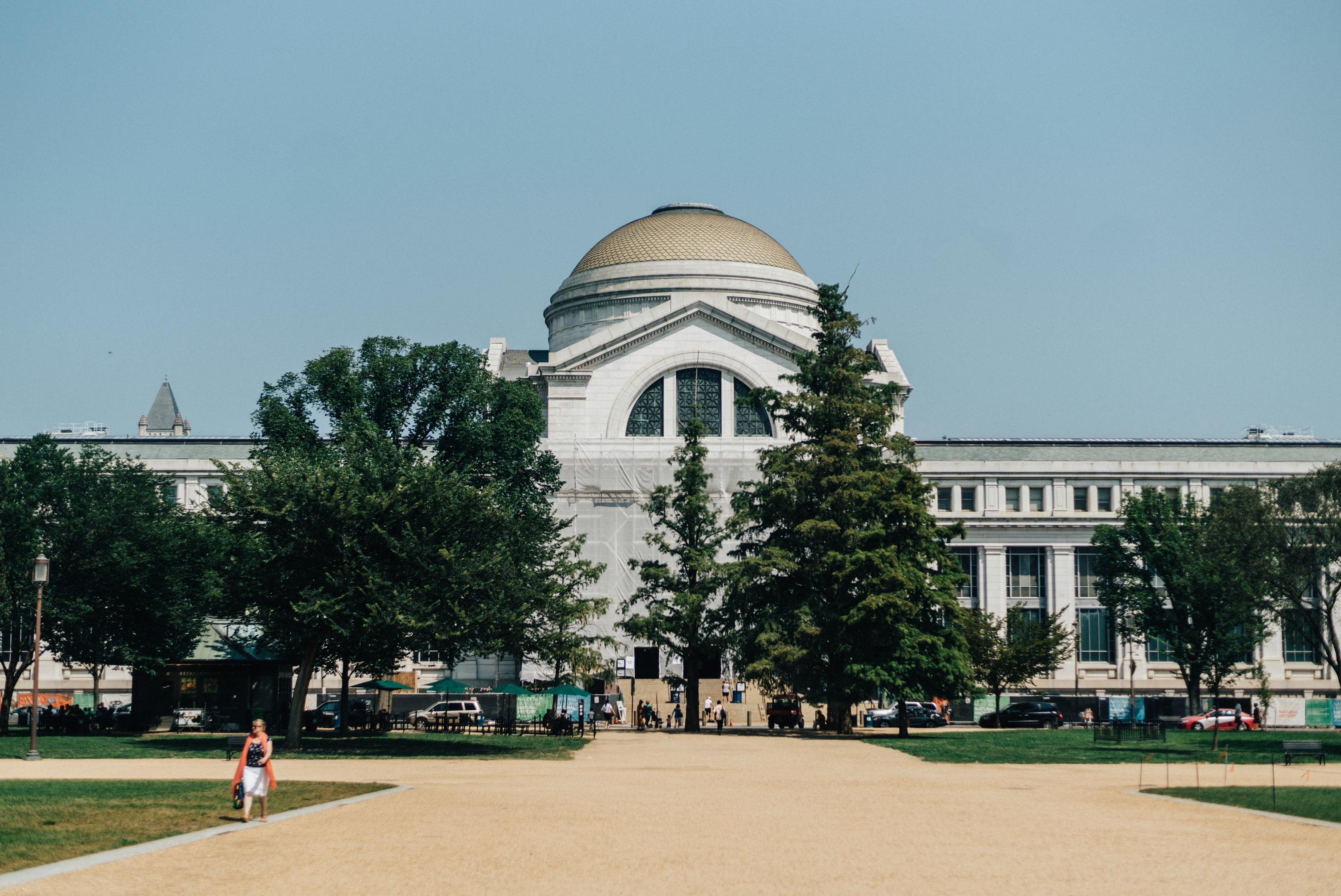 Washington DC Museum Guide