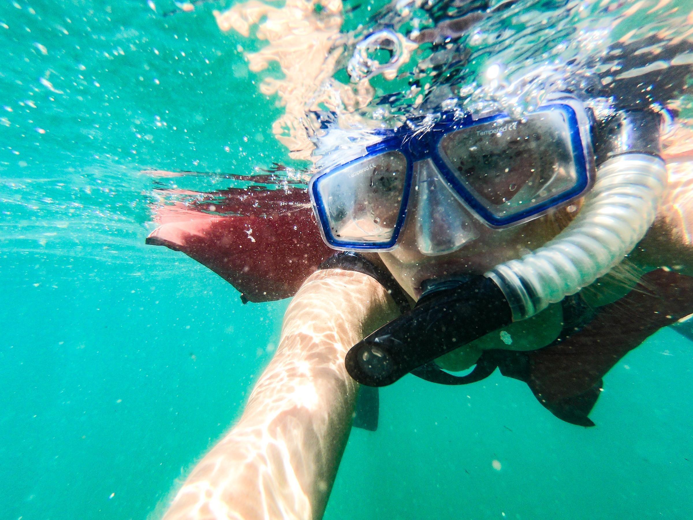 Top 5 Water Activities in Los Cabos