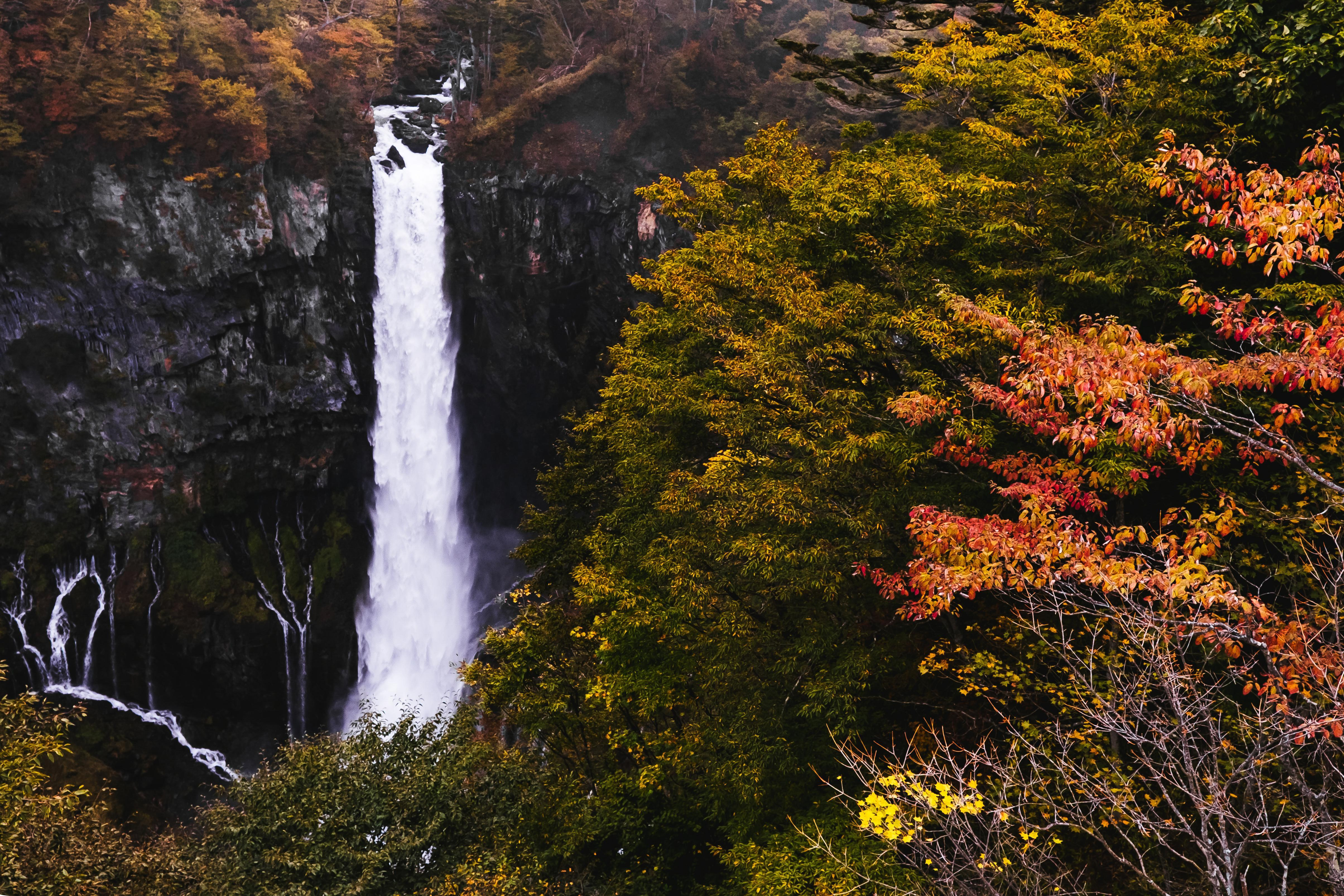 Things to Do in Tokyo This Fall
