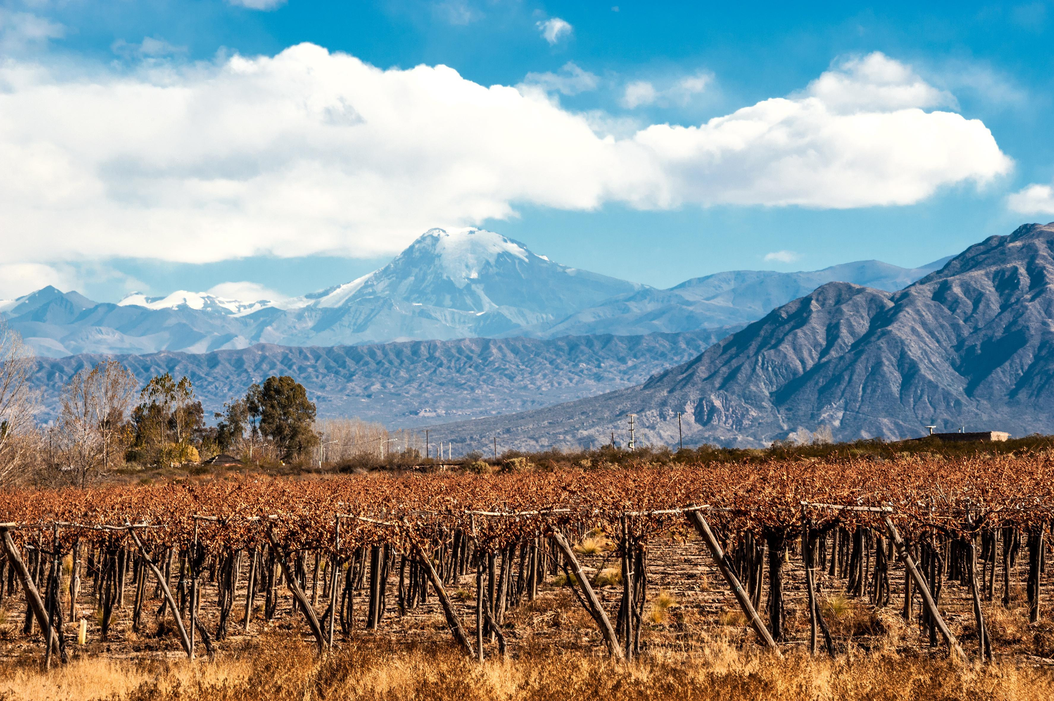 How to Spend 1 Day in Mendoza