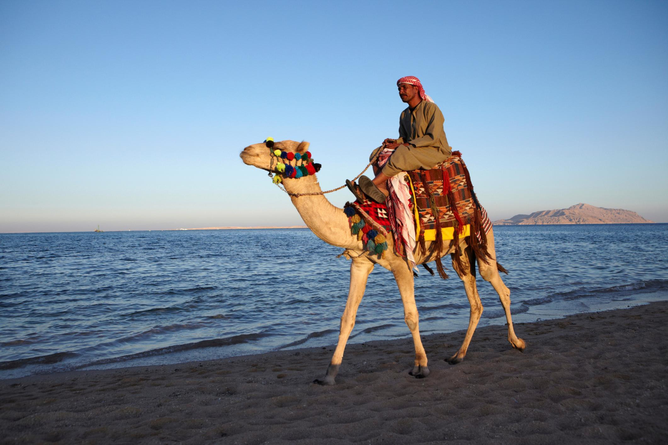 How to Spend 2 Days in Sharm El Sheikh