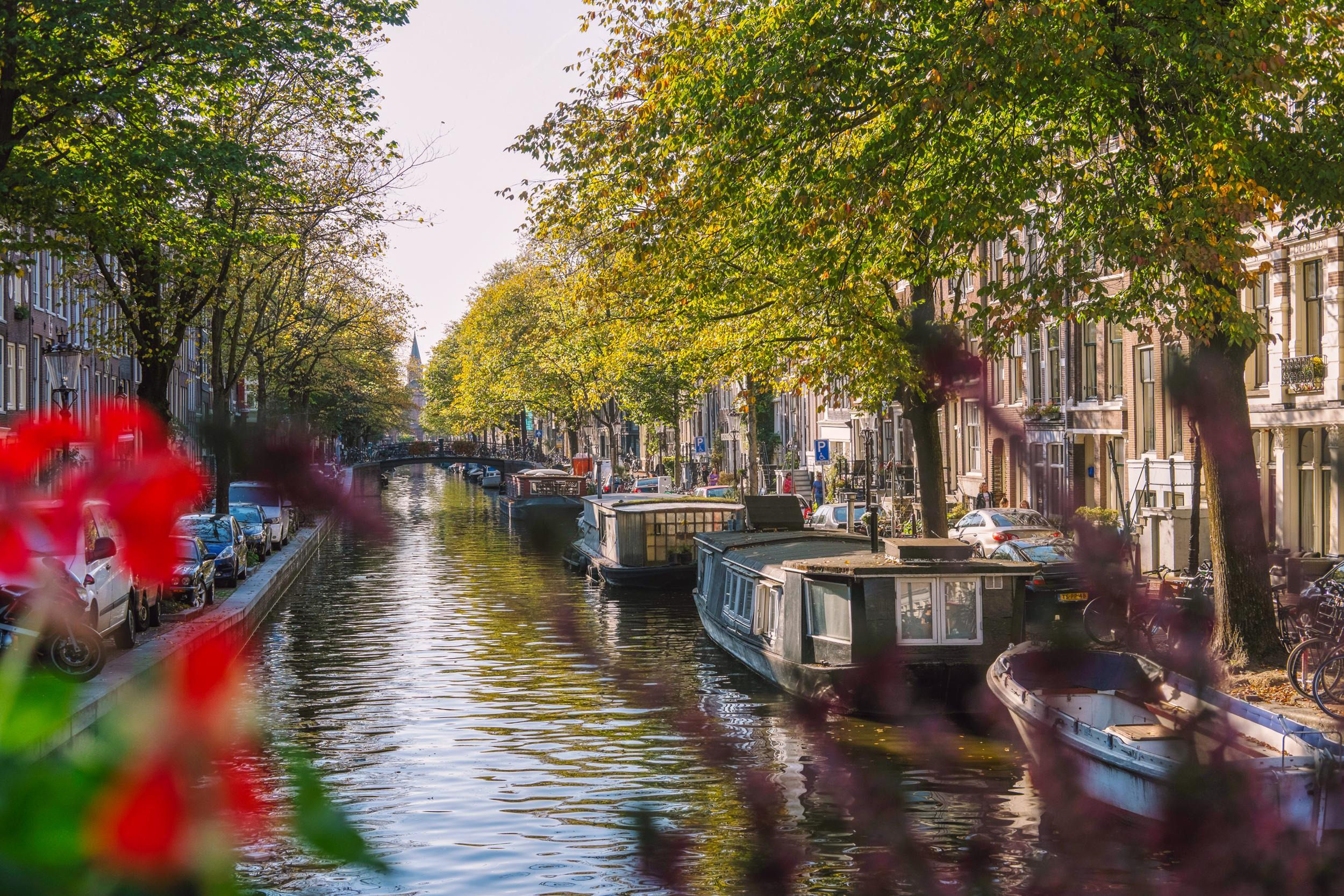 Where to Find the Best Views in Amsterdam