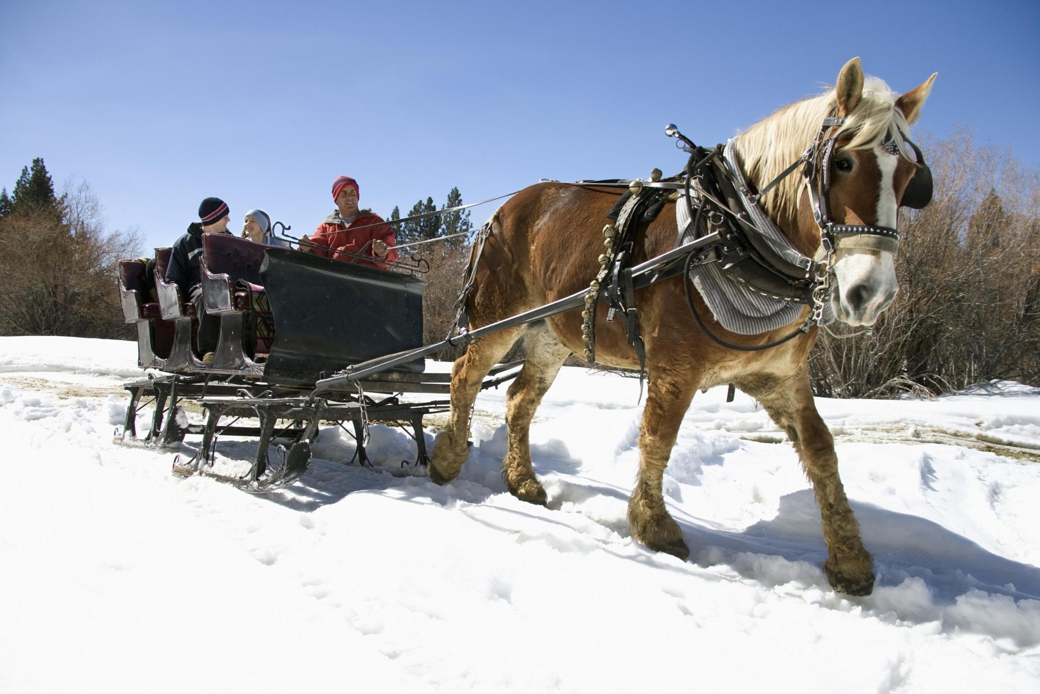 Kid-Friendly Winter Activities in Lake Tahoe