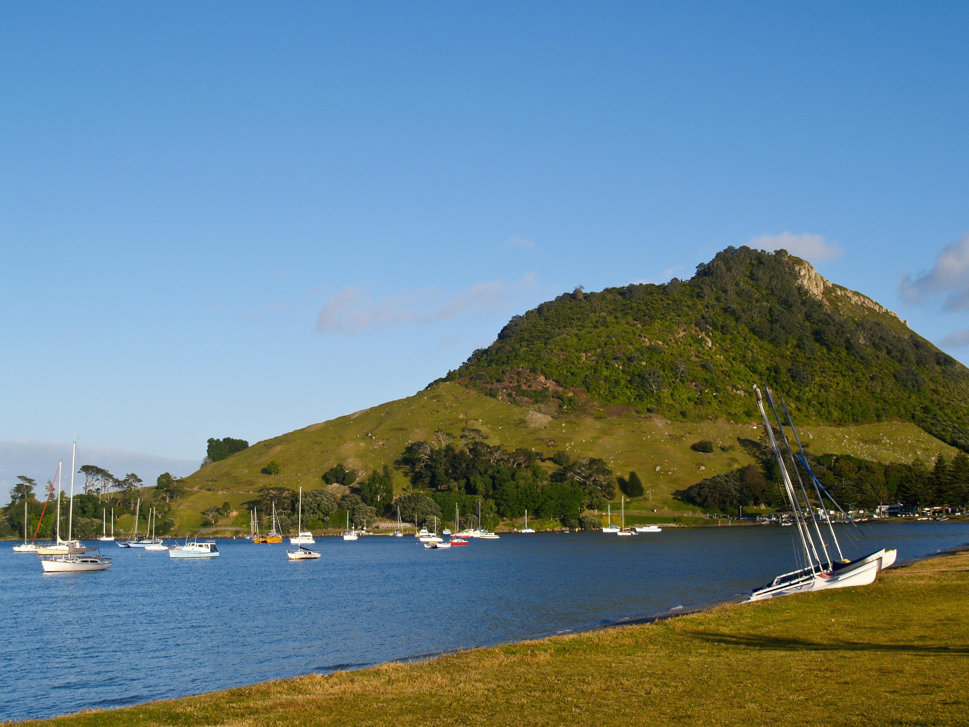How to Spend 2 Days in Tauranga