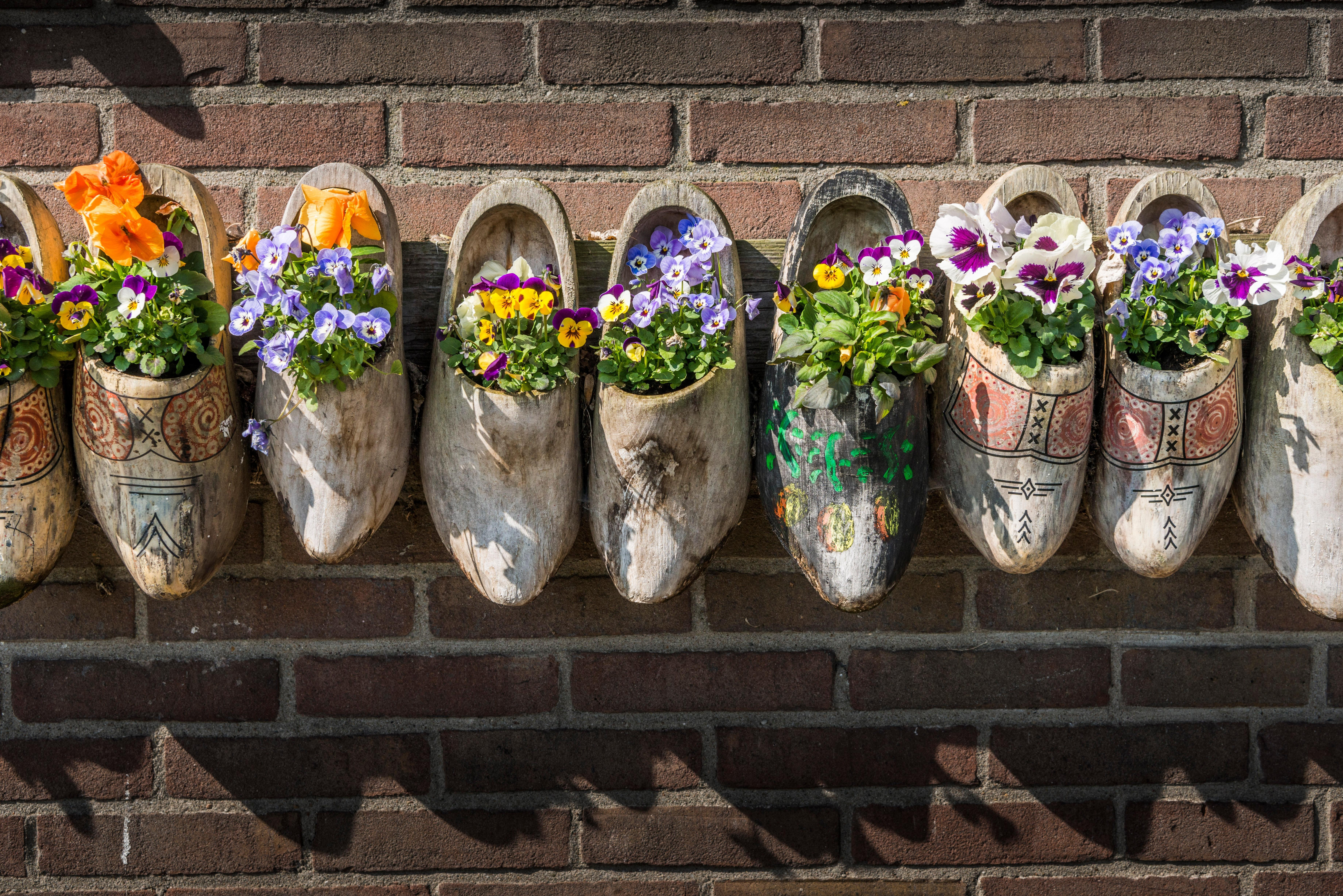 Art Lover's Guide to Amsterdam