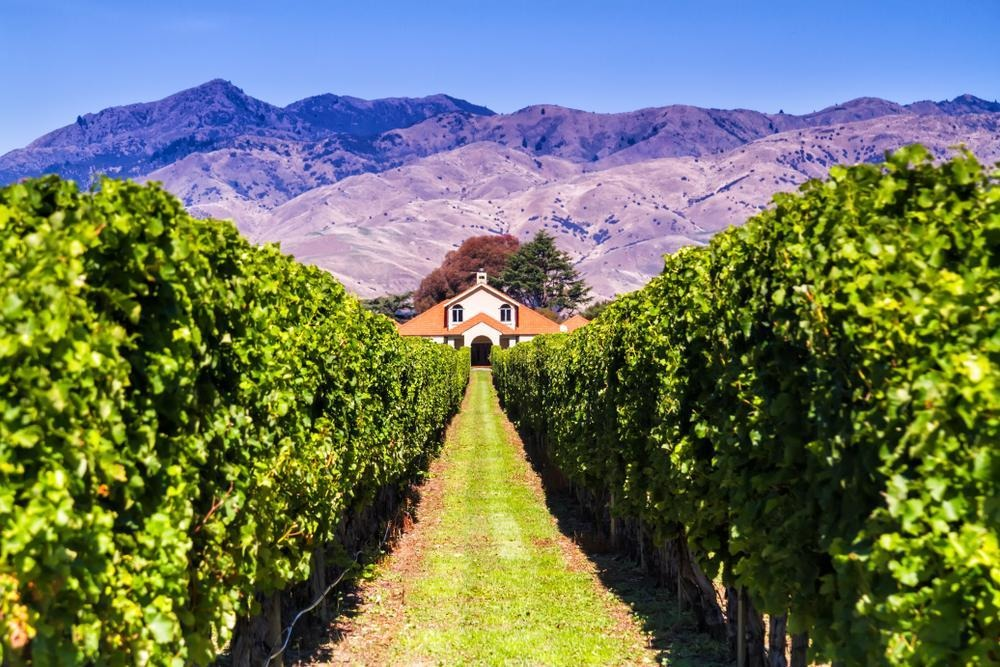 How to Spend 3 Days in Blenheim