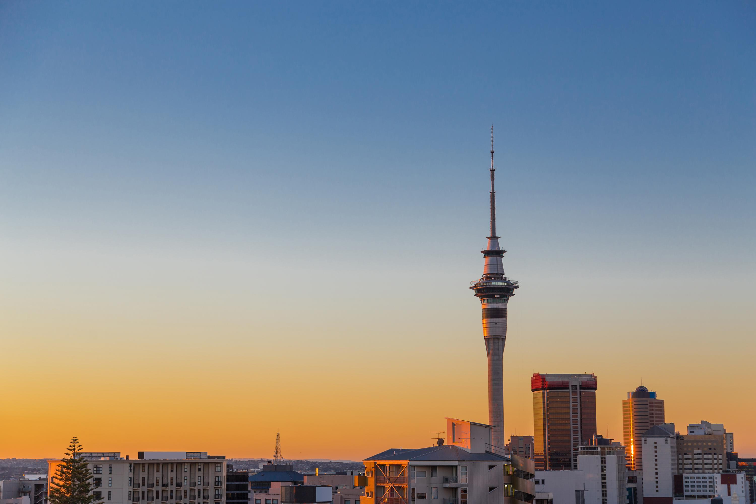 How to Tackle Auckland as a First Timer
