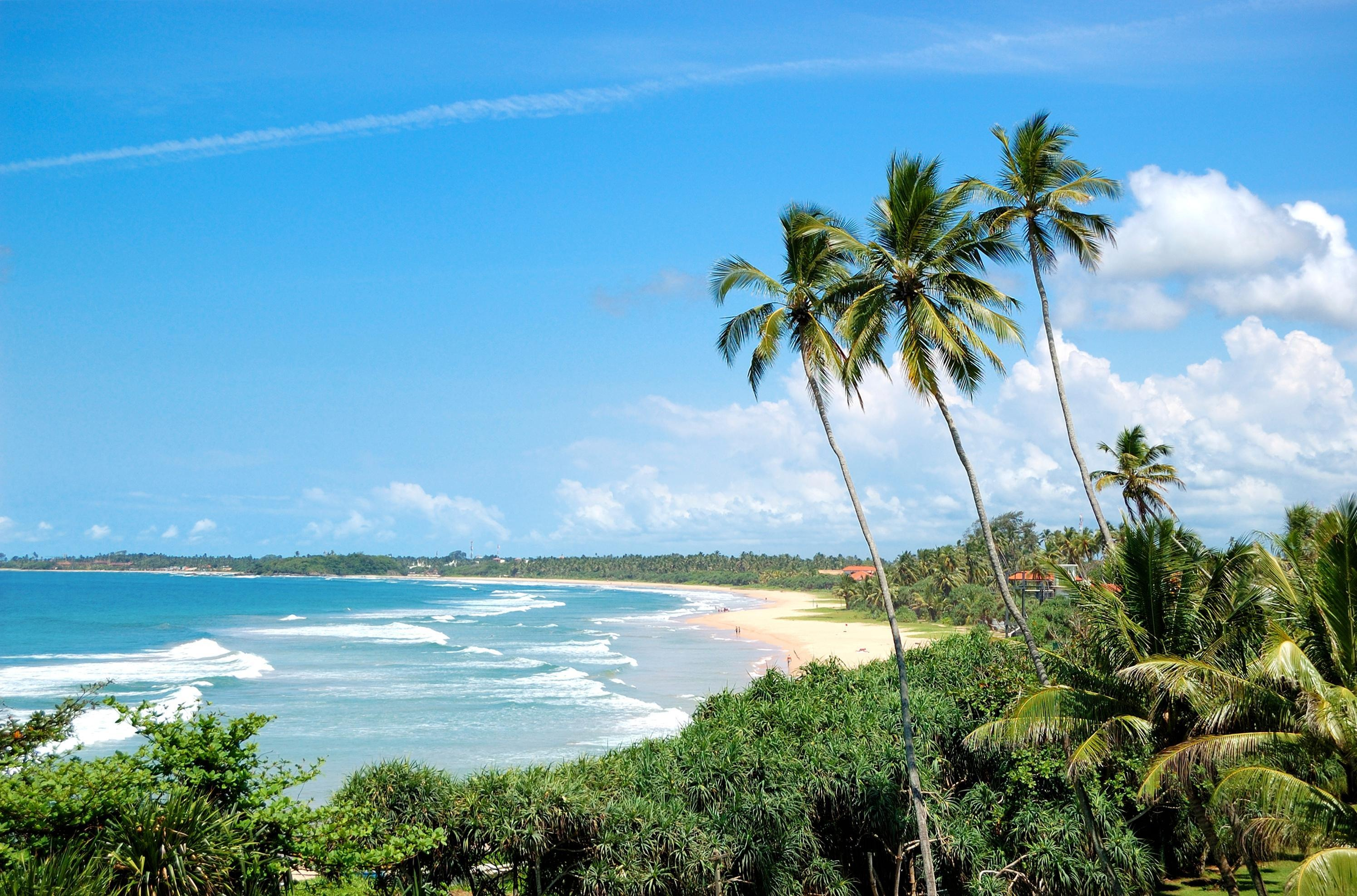 How to Spend 1 Day in Bentota