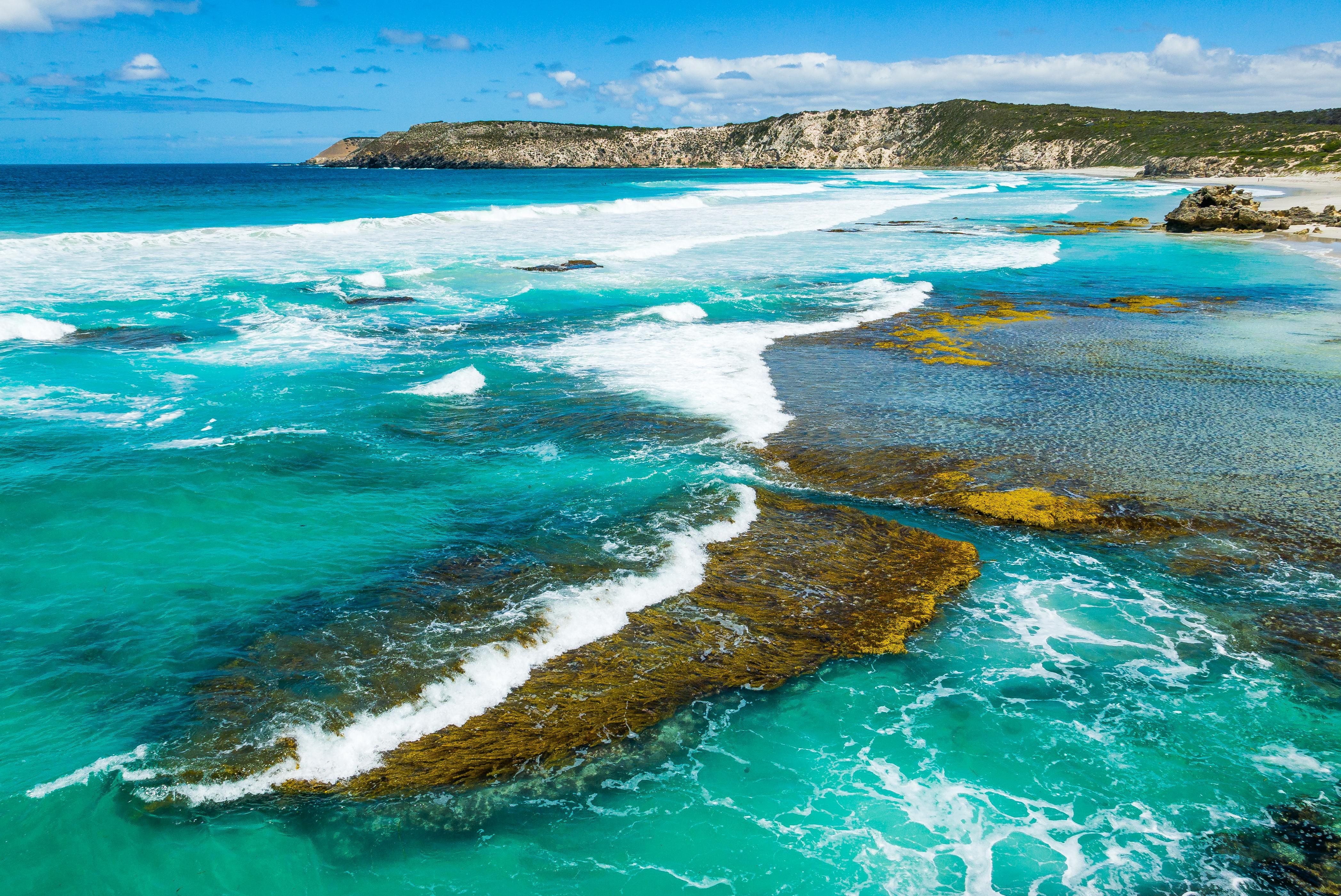 How to Spend 1 Day on Kangaroo Island