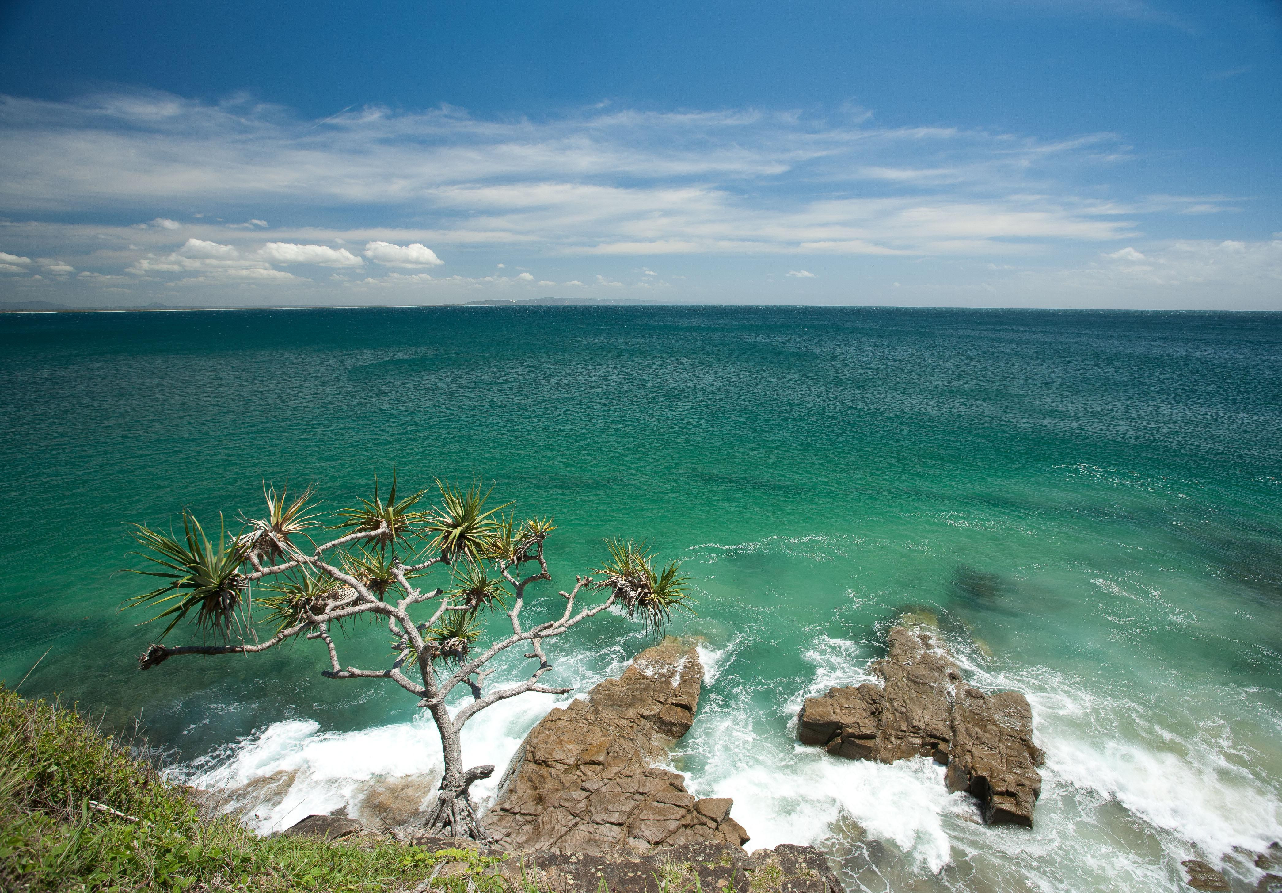 How to Spend 2 Days in Noosa and the Sunshine Coast
