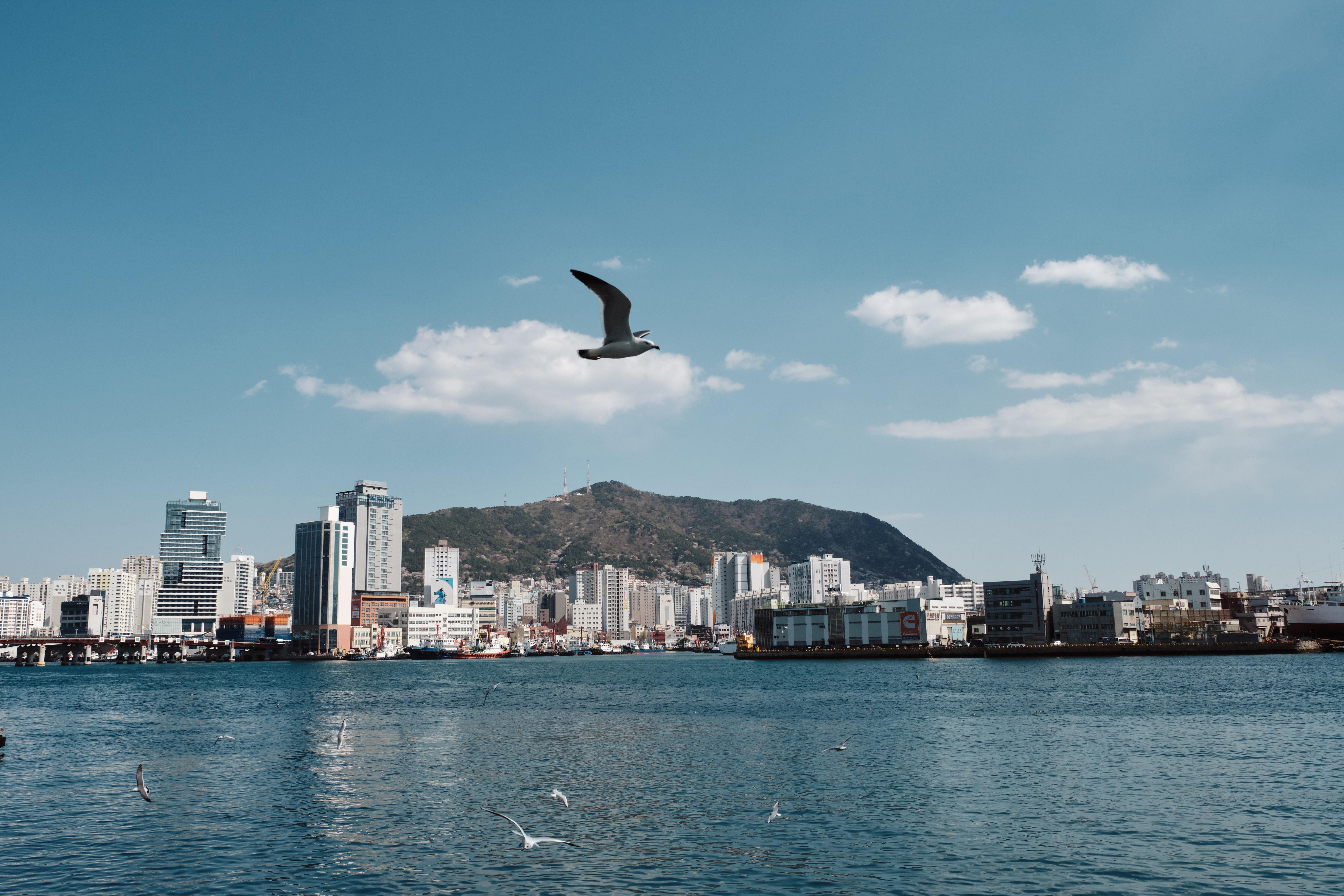 How to Spend 2 Days in Busan