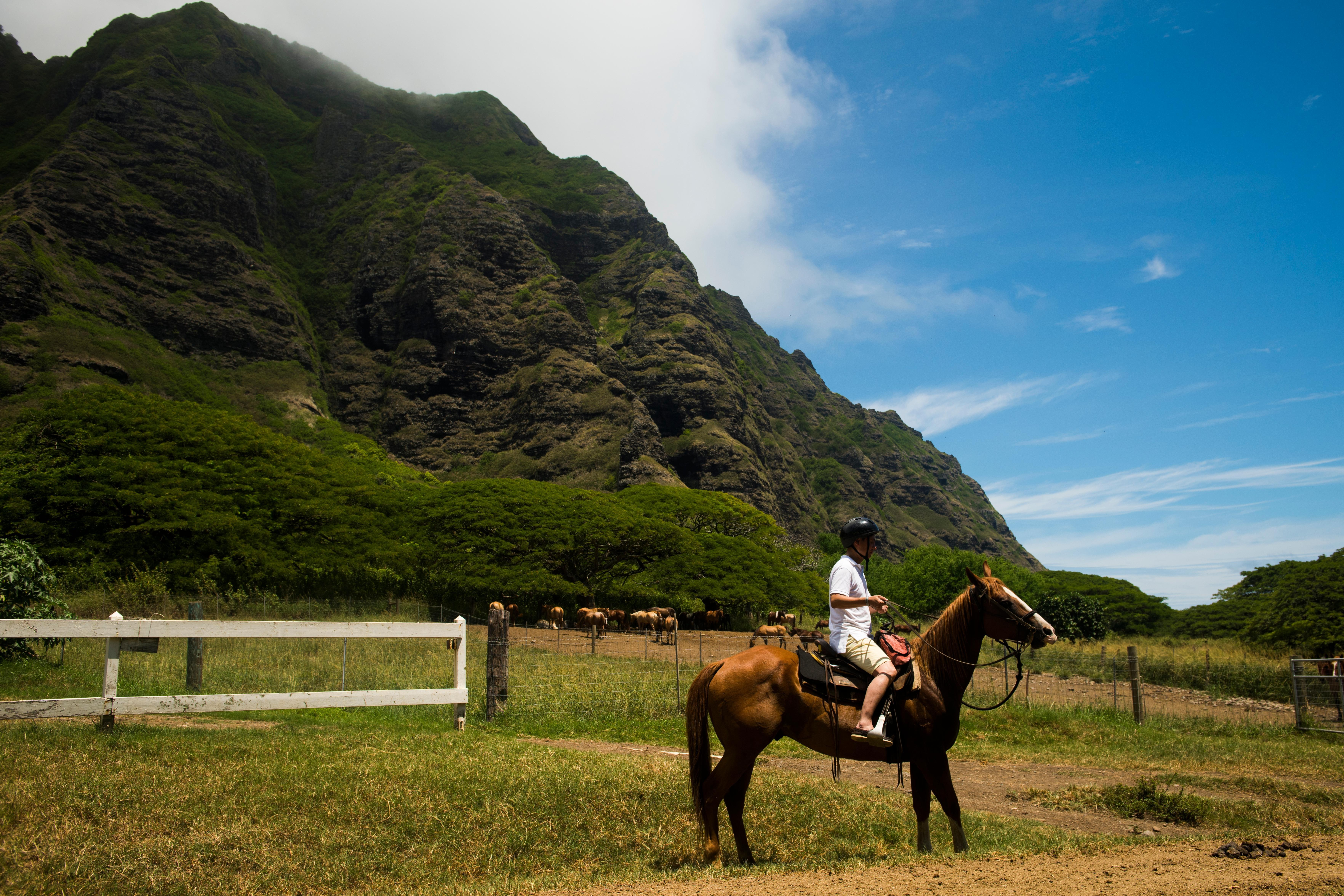 Things to Do on Oahu This Summer