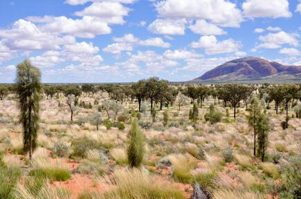 How to Spend 1 Day in Alice Springs