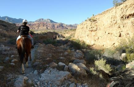 Horseback Riding in Red Rock Canyon