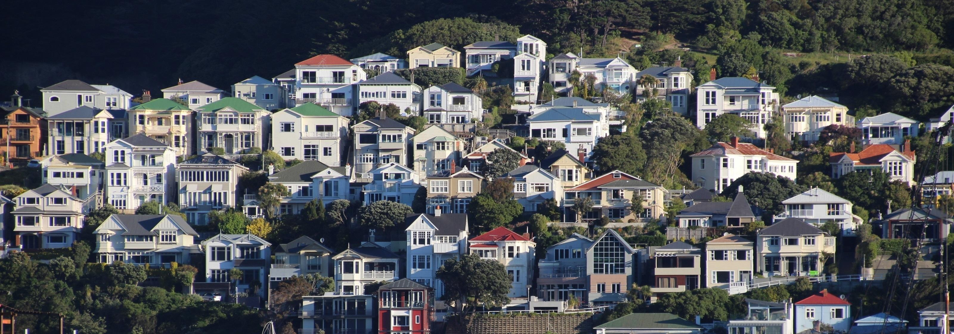 Aktivitäten in Wellington
