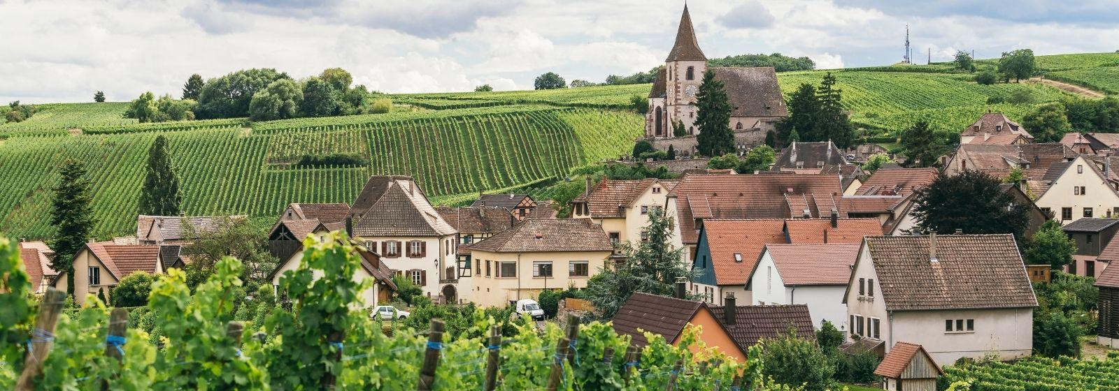 Things to do in Burgundy