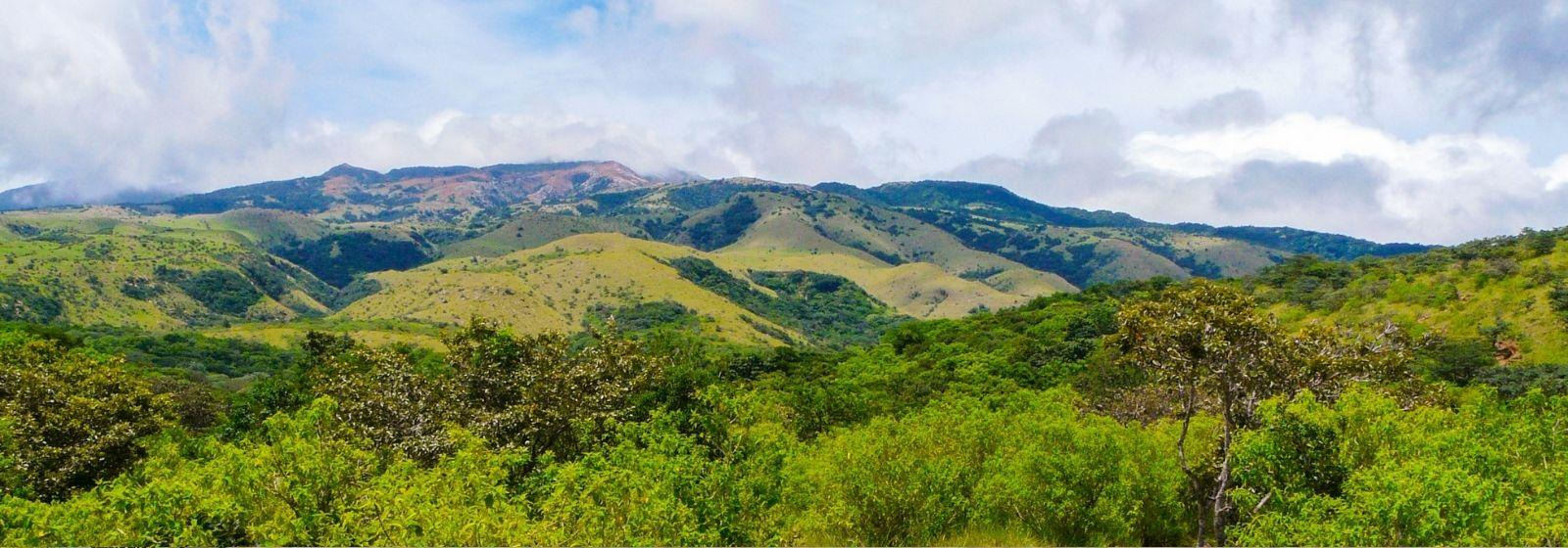 Things to do in Guanacaste and Northwest