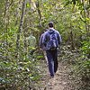 Natureza e vida selvagem