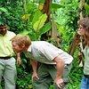 Plantation Tours
