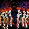 Shows en optredens