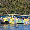 Duck Boat Tours