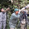 Naturaleza y fauna salvaje