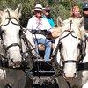 Paseos en coche de caballos