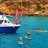 Glass Bottom Boat Tours