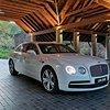 Luxury Car Tours