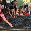 Wine Making Workshops