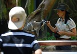 Australia & Pacific - Australia: Currumbin Wildlife Sanctuary General Entry Ticket