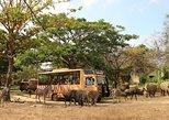 Full Day Bali Safari and Marine Park Dragon Package