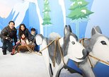 1-hour Snow Play Session at Snow City Singapore