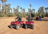 Full-Day Camel Riding with Quad Bike Experience from Marrakech