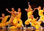 Luoyang One Day Private Tour of Shaolin Temple and Longmen Grottoes Including Lunch