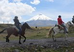 Cotopaxi National Park Horseback Ride Excursion