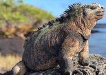 4 Day Galápagos en Santa Cruz Island Land Tour