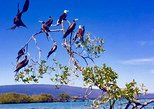 8 Day Quito City & Galápagos Islands Land Tour