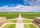 Excursão Privada a Lujan De Cuyo Wine Country saindo de Mendoza. Mendoza, ARGENTINA